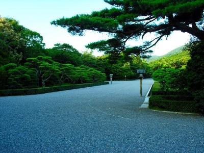 Японский пейзаж-8