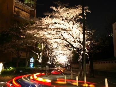 Японский пейзаж-10