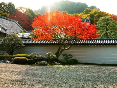 Японский пейзаж-23