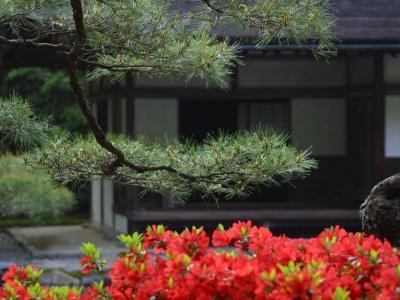 Японский пейзаж-53