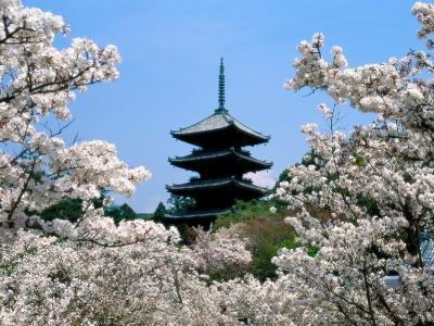 Японский пейзаж-37