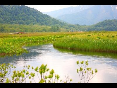 Японский пейзаж-3