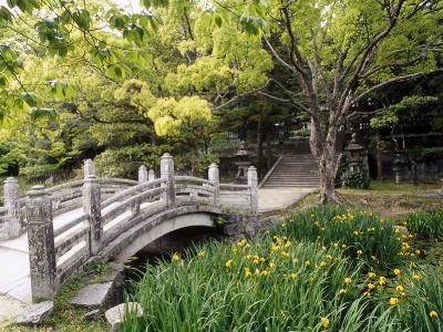 Японский пейзаж-13
