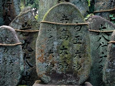 Японский пейзаж-49