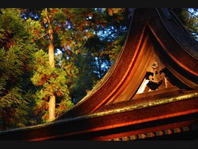 Японский пейзаж-9