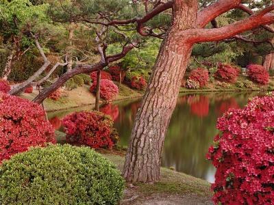 Японский пейзаж-14