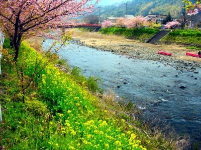 Японский пейзаж-40