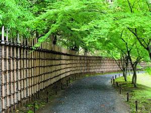 Японское лето